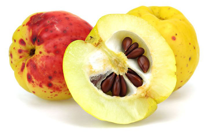 Is Juicing Apple Seeds Safe? – Get the Detailed Answer